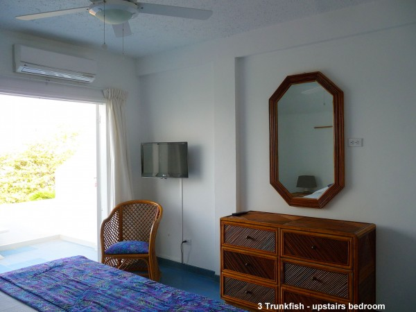 3 Trunkfish - upstairs bedroom a