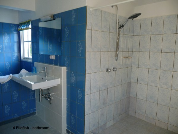 4 Filefish - bathroom