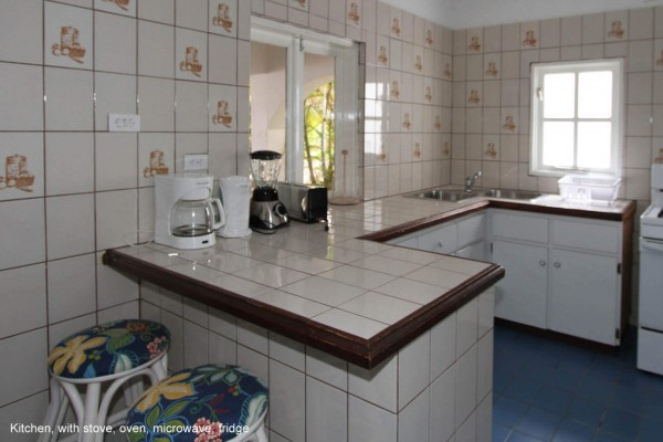 Kitchen1 (1)